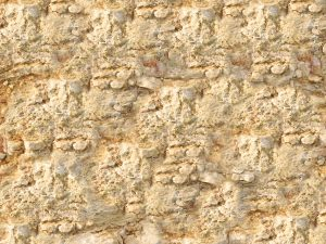 אבן בראשית ייבוא ושיווק אבנים טבעיות